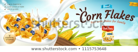 Corn flakes with blueberries Stock photo © fotogal