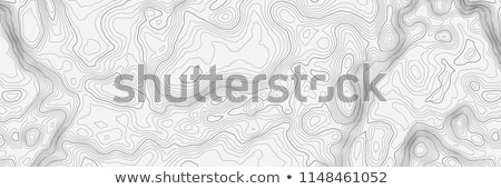 contour topographic map vector illustration Stock photo © SArts