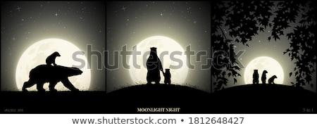 Foto stock: Noite · paisagem · tenha · lua · ilustração · vetor