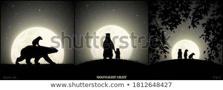 vetor · lua · céu · noturno · floresta · árvores - foto stock © rwgusev