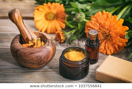 Calendula alternative medicine. Fresh blooming calendula, pot marigold on a wooden table Stock photo © Virgin