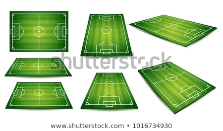 soccer field european football stadium court for sport game vector stock photo © andrei_