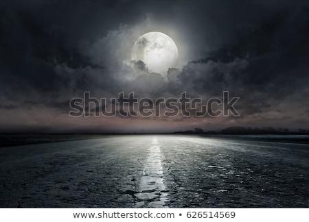 Dolunay çöl sahne örnek bulutlar ahşap Stok fotoğraf © bluering
