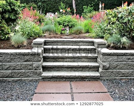 Kő ösvény közelkép részlet utca tégla Stock fotó © boggy
