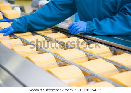 Production of cheese Stock photo © grafvision
