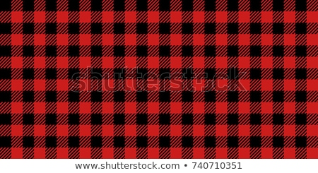 Lumberjack plaid pattern. Red and black lumberjack. Stock photo © AisberG