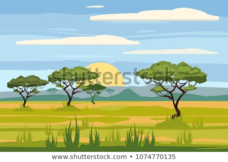 Safari manzara sahne karikatür sevimli Stok fotoğraf © Krisdog