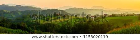 füst · kémény · tető · napos · idő · fa · tavasz - stock fotó © simply