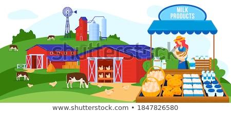 Zomer markt kaas verkoper producten vector Stockfoto © robuart