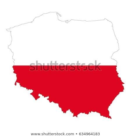 Polônia bandeira branco projeto onda fita Foto stock © butenkow