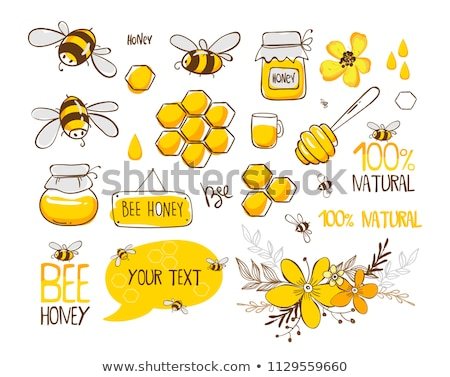 Wektora zestaw Pszczoła plaster miodu charakter zwierząt Zdjęcia stock © olllikeballoon