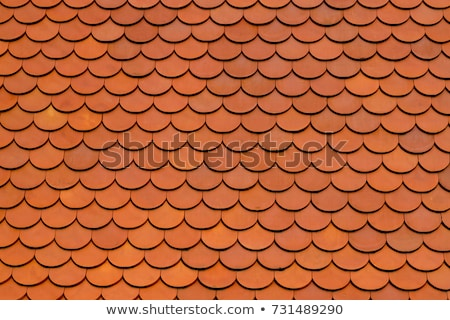 Roof texture Stock photo © stevanovicigor