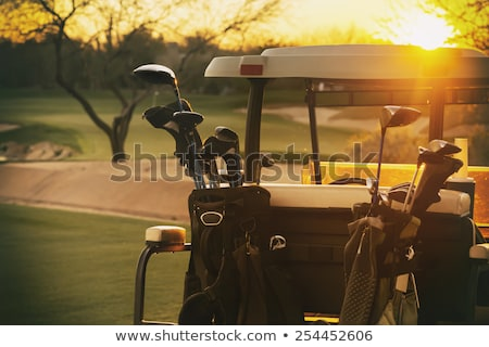Couple in golf cart Stock photo © photography33