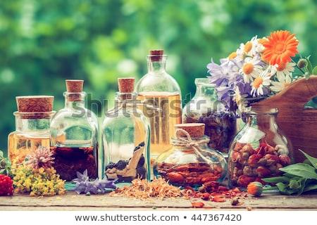 Demleme fincan çay tıbbi sağlık Stok fotoğraf © marimorena
