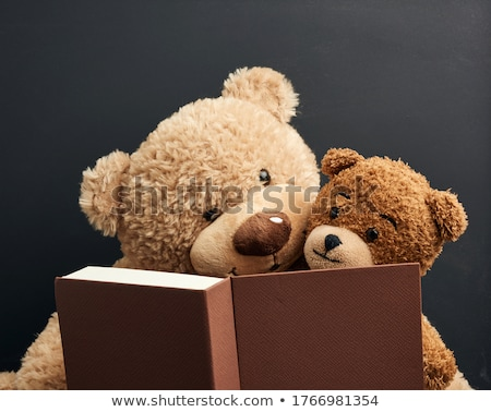 dos · osos · de · peluche · amor · fondo · tener · blanco - foto stock © ivelin