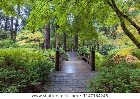 Stock photo: Rock And Bridge At Japanese Garden