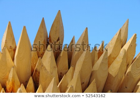 alignment of wooden stakes Stock photo © njaj