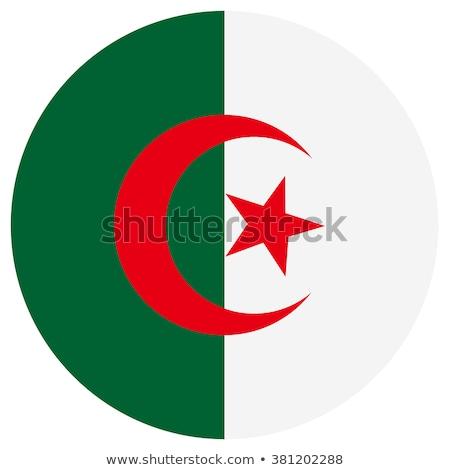Алжир флаг икона изолированный белый интернет Сток-фото © zeffss
