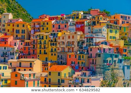 színes · épületek · Olaszország · város · nyár · ablakok - stock fotó © fisfra