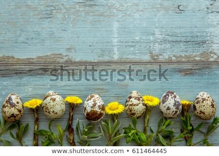 tête · table · haut · jeunes · Pâques · nature - photo stock © vetdoctor
