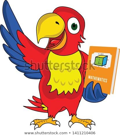 Vicces papagáj bemutató rajzfilmfigura izolált fehér Stock fotó © RAStudio