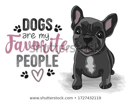 french bulldog and paw stock photo © cynoclub