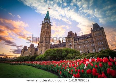 Parliament of Canada in Ottawa, Canada stock photo © bigjohn36