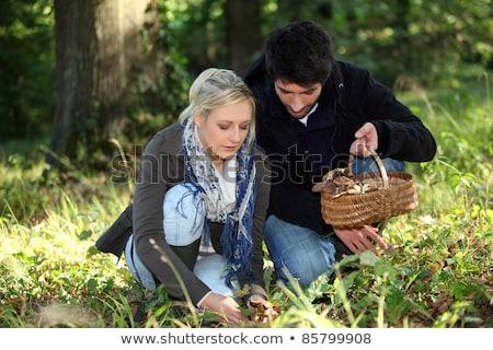 Fiatal pér gyűlés gombák férfi fák fiatal Stock fotó © photography33