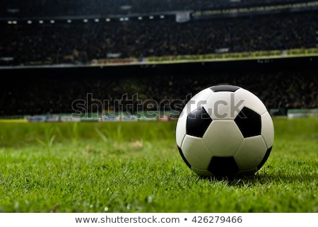 soccer ball and grass field background stock photo © lightsource
