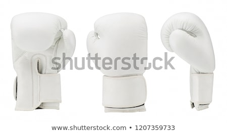 Boxing gloves on a white Stock photo © ozaiachin