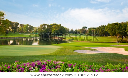 on the spring golf course stock photo © capturelight