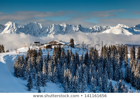 mountain peak and ski slope near megeve in french alps france stock photo © anshar