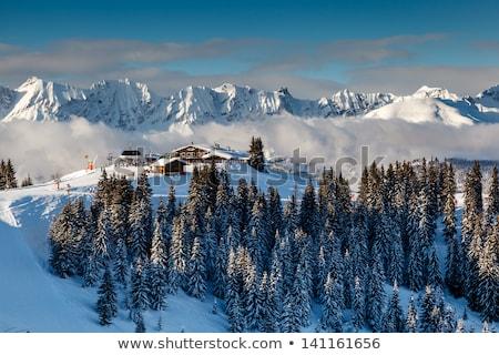mountain peak and ski slope near megeve in french alps france stock photo © anshar