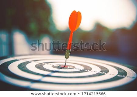 качество · компас · красный · успех · стрелка · управления - Сток-фото © tashatuvango