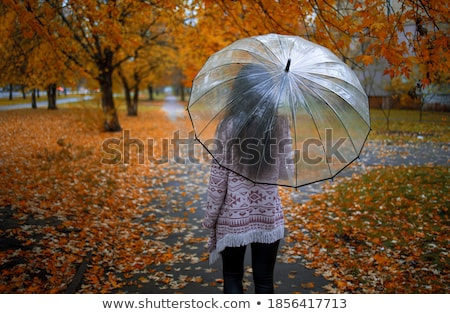 Woman with red purse and umbrella Stock photo © vetdoctor