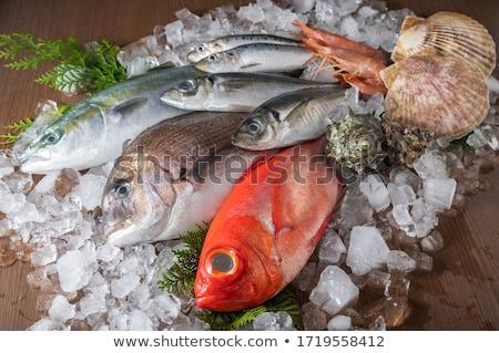 Friss hal nyers kirakat citrom citrus Stock fotó © stevemc