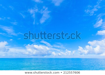 gyönyörű · díszlet · ragyogó · kék · ég · óceán · víz - stock fotó © shihina