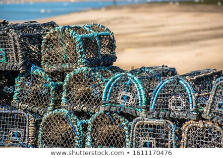 Lagosta porto azul indústria Foto stock © jenbray