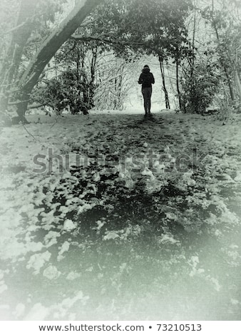 Woman On Country Walk Through Woodland Stock photo © monkey_business