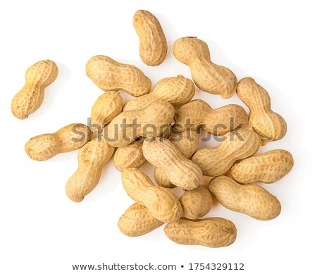 Groundnuts on white Stock photo © vinodpillai