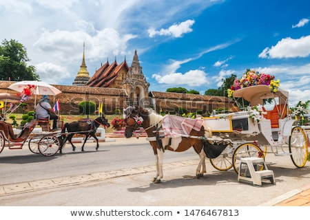 Front Wat Phra That Lampang Luang temple Stock photo © Yongkiet
