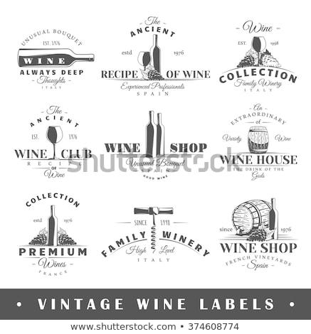 Set of Banners: Wine Theme Stock photo © BibiDesign