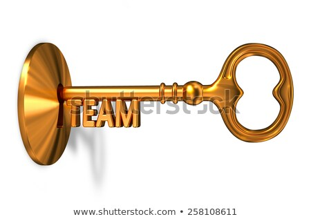 Team - Golden Key is Inserted into the Keyhole. Stock photo © tashatuvango