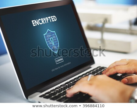 Data Encryption. Online Working Concept. Stock photo © tashatuvango