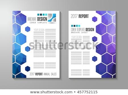 set · brochure · modello · flyer · design · coprire - foto d'archivio © davidarts