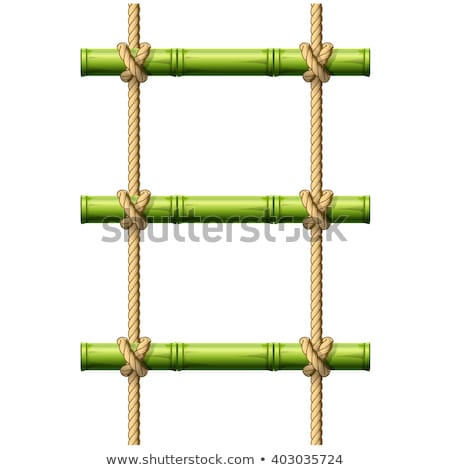 Bamboo rope ladder - crossbeams connected with knots Stock photo © Winner