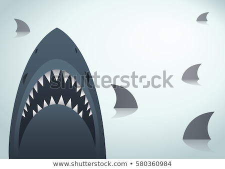 Tengeri ragadozó cápa terv veszélyes farok Stock fotó © robuart