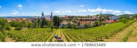 View over Bamberg and Michaelsberg Abbey Stock photo © manfredxy