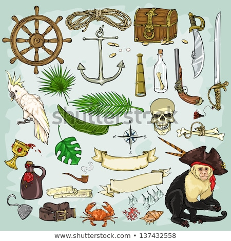 vector pirate scroll with palm stock photo © dashadima