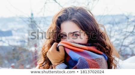 Pierwszy śniegu długo oddziału jodła krajobraz Zdjęcia stock © IMaster